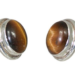 post tiger eye earrings